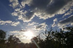african sky corina