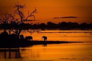 barnes family blog botswana sunset