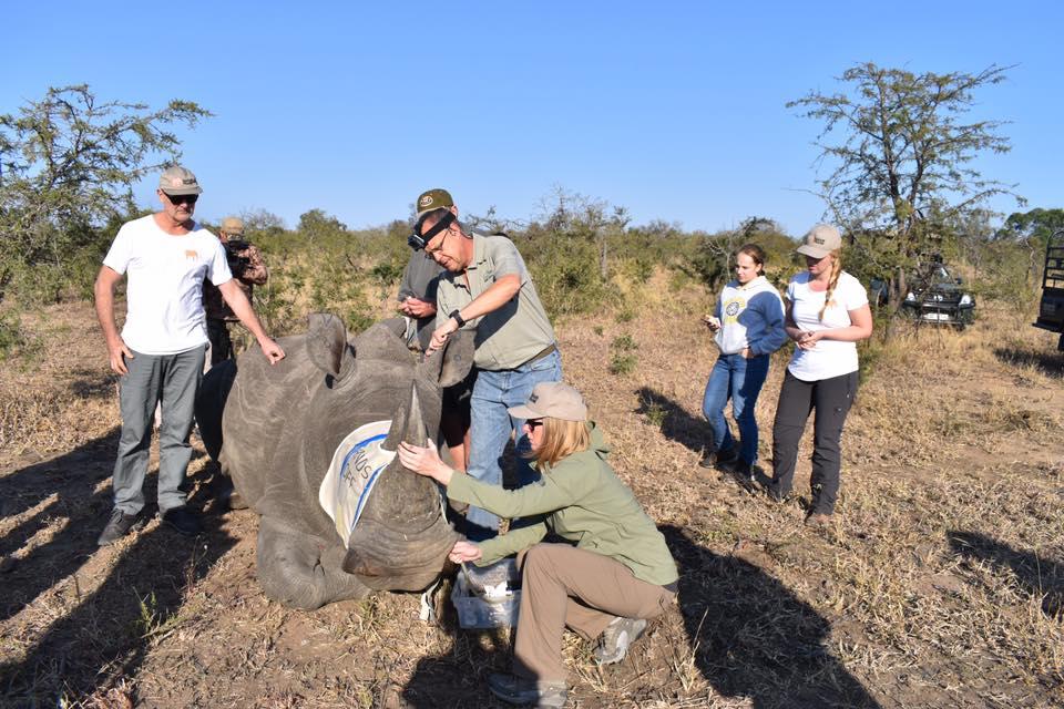 rhino notching team