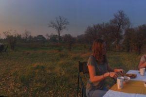 dinner mobile safari britta