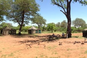 Botswana Mobile Safari Camp Pano