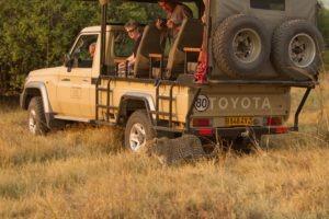 Botswana Mobile Safari game drive leopard