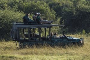 Botswana mobile safari game drive