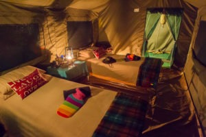 Botswana mobile safari internal tent camping beds