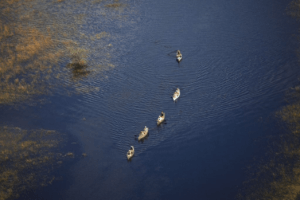 Botswana selinda spillway canoe safari aerial