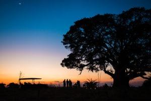 Busanga zambia Mukambi sun downer