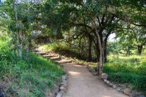 Ecotraining Karongwe Path