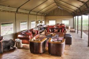 Desert Rhino Camp Lounge Area