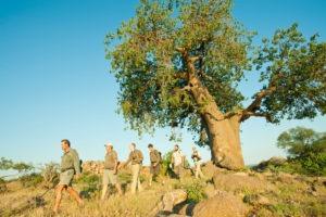 Ecotraining Baobab walk