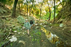 Makuleke-students-walking-forest