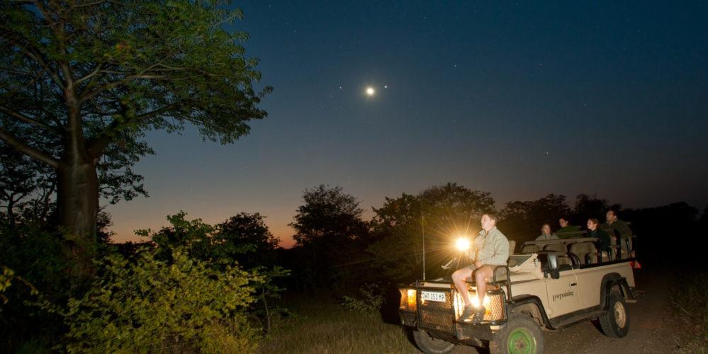 Ecotraining nightdrive