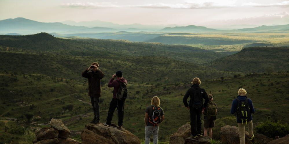 Kenya Borana Waking View