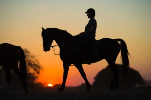 Northern Tuli Botswana horse riding sunset