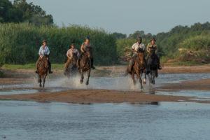 Northern Tuli Botswana horse riding through water