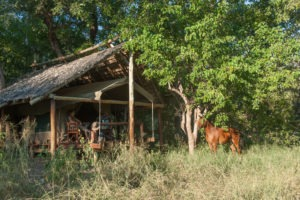 Northern Tuli Botswana resting camp