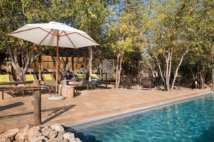 Ongava Tented Camp Pool
