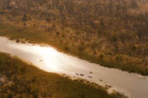 Selinda Spillway Botswana river