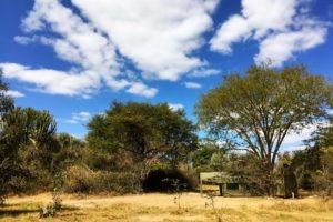 Zambia kafue busanga mobile safari camp