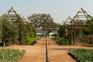 babylonstoren gardens