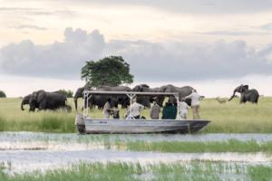 botswana boating safari photo chobe