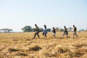 busanga walking safari