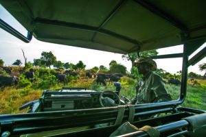 duba expedition camp botswana guide