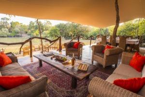 fig tree lounge area