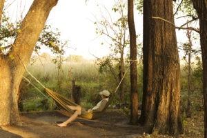 footsteps hammock camp