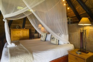 hornbill lodge kariba king room