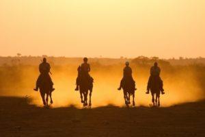 mashatu tented camp horse
