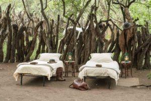 mashatu tented camp kgotla