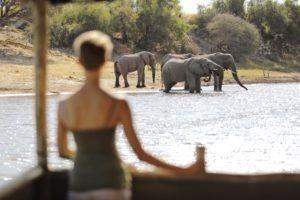 meno a kwena floating hide elephants