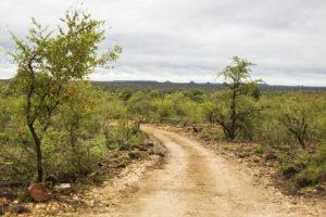 misava safari lodge road