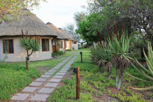 misava safari lodge walkway