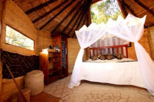mwamba luangwa chalet skylight