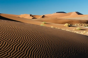 namibia photo safari Sossusvlei Ripples in the Sand