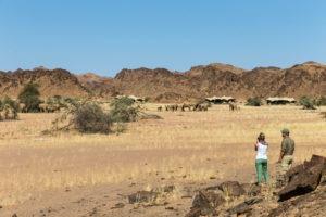 northern namibia Desert Adapted ElephantHoanib Skeleton Coast Camp