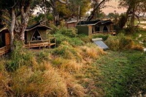 oddballs camp all tents sunset