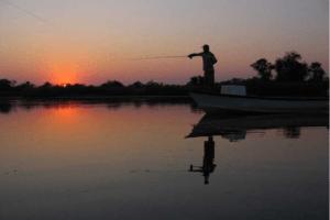 okavango delta sunset fishing cast