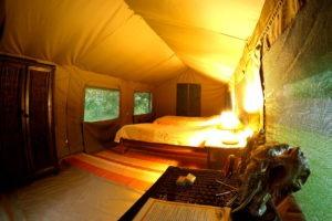 pioneer camp lusaka tent
