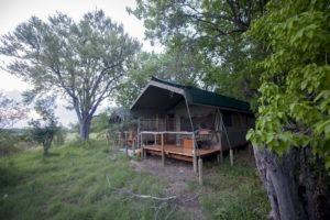 sango safari camp khwai tent day