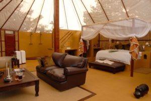 sausauge tree camp honeymoon