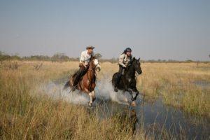 selinda spillway botswana horse adventure
