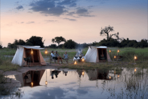 selinda spillway camp set up walking safari