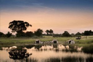 selinda spillway camp walking safari