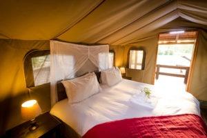 shindzela timbavati tent double bed