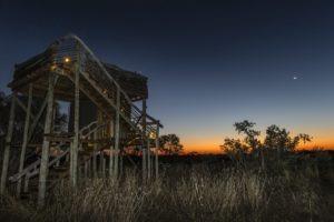 skybeds khwai reserve night