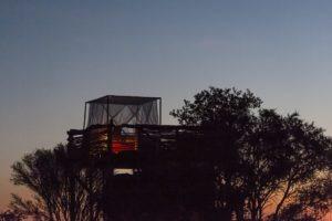 skybeds khwai reserve sunset