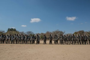 south africa rhino conservation sawc