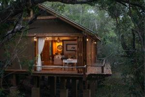 tongabezi lodge livingstone dog house
